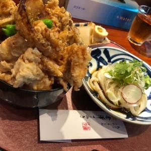金澤さぬき 野菜天うどん、鶏天舞茸丼うどん