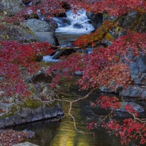 桐生川徘徊