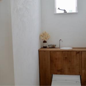 【新居版】トイレDIYの詳細①壁塗り編