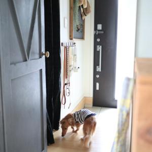 極狭玄関でもOK!色々使える壁掛けフックをDIY