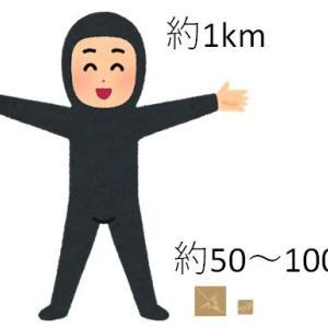 【寄稿】ナスカの地上絵とダイダラボッチの身長の検証