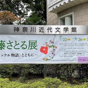 「佐藤さとる展―『コロボックル物語』とともに―」 @神奈川近代文学館