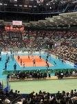 スポーツ観戦!!