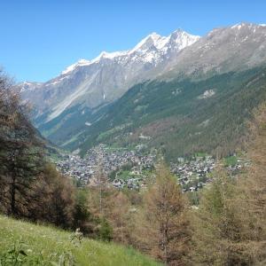 2018 スイス旅行記 その6 美しきスイスの村(ハイキング)