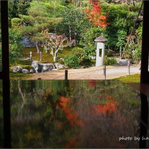 紅葉の京都へ
