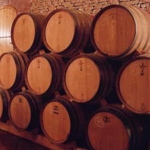 スペインワイン研修 6日目 2019.9.15 ナバーラ&テラ・アルタ