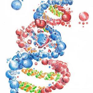医療検査学科の化学講義(25)窒素を含む有機化合物
