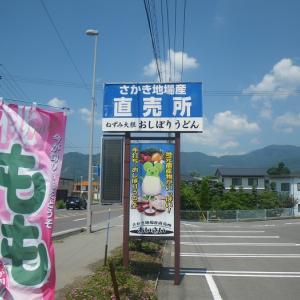 長野県に避暑に、  8/10~8/15   (8/11  その3)