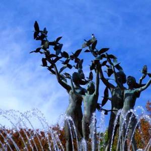 昭和記念公園の噴水 (11月17日)