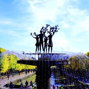 黄葉が見ごろの昭和記念公園 (11月17日)