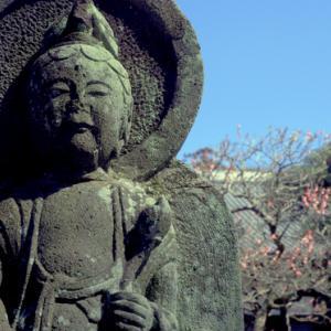 早春の北鎌倉(2月 円覚寺)