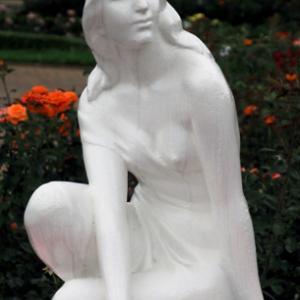 薔薇の花(2020年6月18日 谷津バラ園)