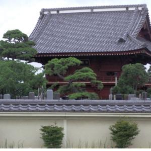 徳願寺の石仏 番外編(7月12日 寫壇太陽撮影会にて)