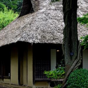 江戸東京たてもの園 同心の家(9月13日 寫壇太陽撮影会)