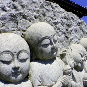 妙典寺町 徳願寺 (8月1日 寫壇太陽撮影会)