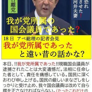 NO.4832 民主主義も台湾に学んだ方がいい(10)