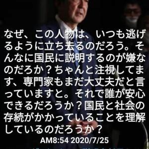 NO.4863 間話・「私は真実が知りたい」赤木雅子さんの叫び(1)