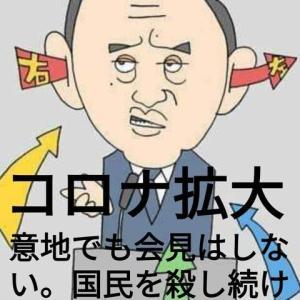 NO.4987 間話・日本の感染対策はデタラメ