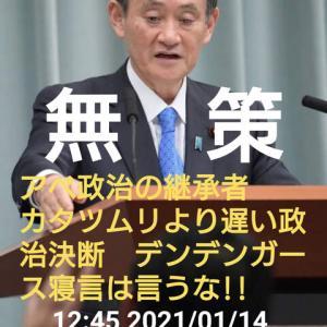NO.5036 海外から見た日本の対策(8)