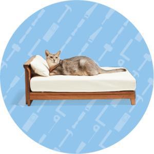 大川家具のネコ家具×美猫