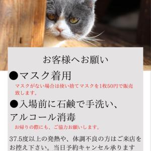 6/1~6/13までの営業のお知らせ