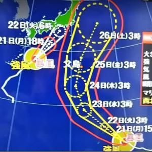 また台風・・・