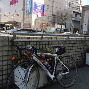 四国遍路自転車旅(2) 徳島遍路ころがし弾丸ツアー