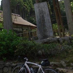 宇治 信楽 和束 茶畑サイクリング