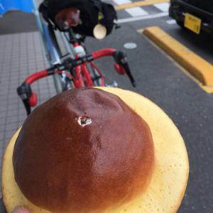 四国遍路自転車旅(4-2)高知県東部激坂寺三連星!