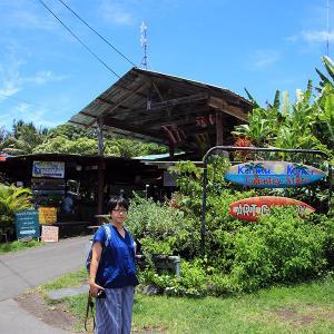 2019ハワイ旅 - カラパナのジェネラルストア前にいたワンコ