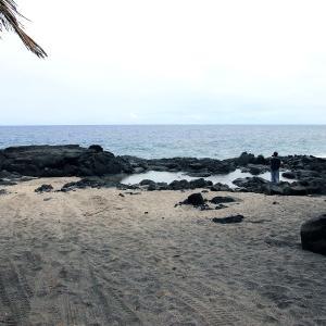 2019ハワイ旅 - 東海岸の名も無いタイドプール