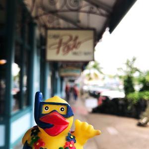 2019ハワイ旅 - ヒロのダウンタウンをホロホロと散策