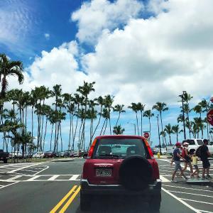 2019ハワイ旅 - ヒロの近く 超穴場 観光ロード