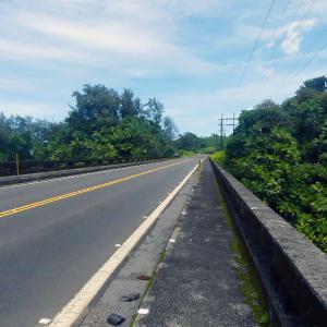 2019ハワイ旅 - ヤシの木に覆われたすごい渓谷にかかる橋