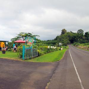 2019ハワイ旅 - ポロルのポツンと一軒 アイスクリームスタンド