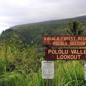 2019ハワイ旅 - ポロル渓谷のルックアウトまで行ってみた