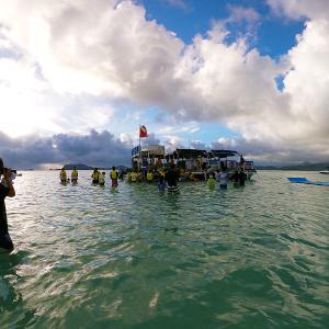 2019ハワイ旅 - キャプテンブルース天国の海 サンドバーでシュノーケル