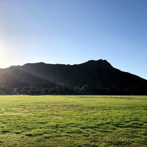 ハワイ州 グリーン副知事が、日本、ニュージーランド、オーストラリアの早期渡航再開に言及しました。