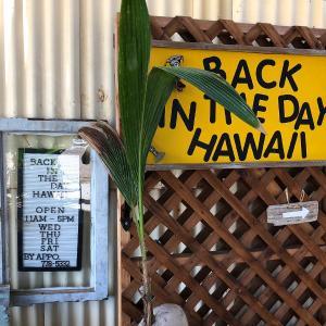 2019ハワイ旅 - ビンテージ好きは絶対行くべきなお店 バック イン ザ デイ ハワイ