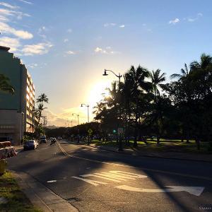 2020.3ハワイ旅 - 早朝のカピオラニ公園散歩で深呼吸は気持ちいい