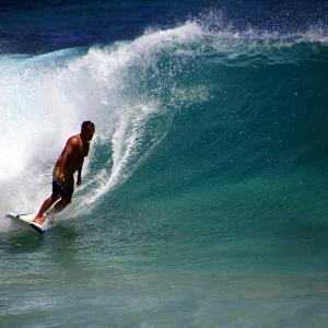 【ライブ映像あり】週末、ノースショアにいい波がくるらしいですよ〜。 私はサーフィンやらないけどね。見るだけ。