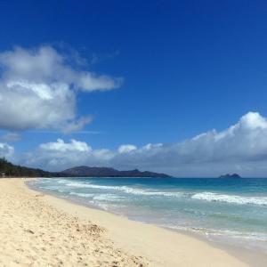 大好きな静かなビーチ 音楽が満ちる1日もありました。