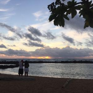 ハワイアンモンクシールに触っちゃったアホウに罰金が課せられました。(動画)