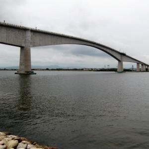 7月のキス釣り第6弾(江島大橋下)