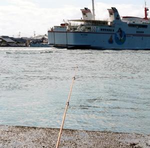 9月のキス釣り第15弾(中海、境水道)