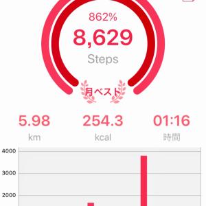 歩数計アプリの真実