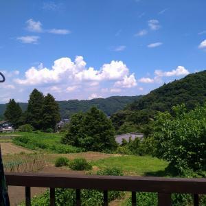今日も良いお天気