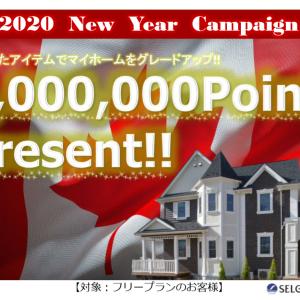 12月20日今日の徳島は晴れです!