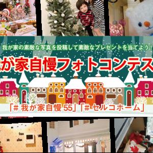 12月25日今日の徳島は晴れです!