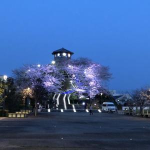 4月3日今日の徳島は晴れです!記事タイトル